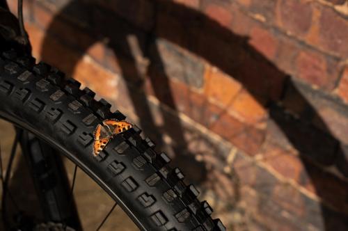 BontragerからMTB用の新型タイヤが一斉に登場!【XR1、XR5、SE5】